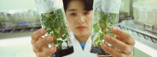 """Der neue Ausbildungsberuf """"Pflanzentechnologe/in"""" stellt sich vor"""